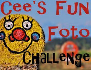 cees-fun-foto[1]