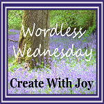 Join Ramona for Wordless Wednesday and Create With Joy http://create-with-joy.com/