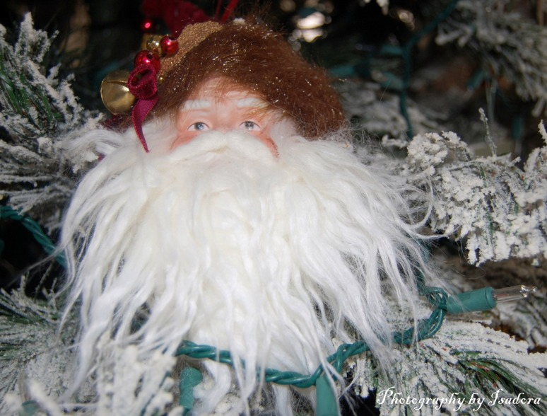 Furry-Santa-Ornament-web-si