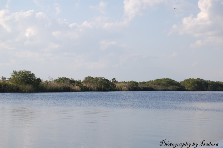 Peace River - open waters web