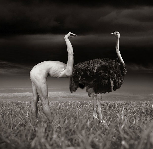 surreal-photo-manipulations-thomas-barbey-3[1]