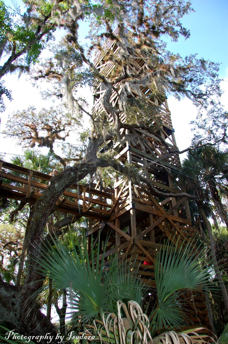 Canopy Tower web -signed  copy
