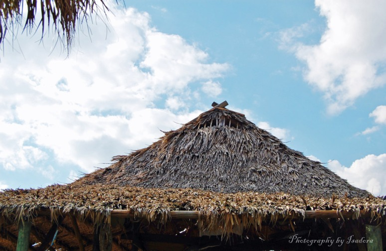 Roof-Thatched---web-signed