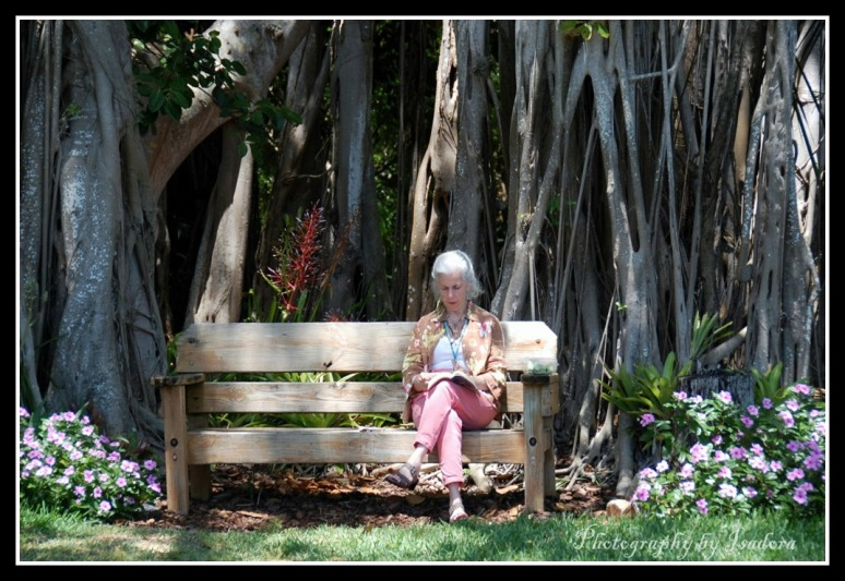 Bench---Woman-Reading-(2)-web