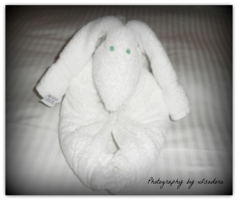 Wordless Wednesday – Towel Sculpture