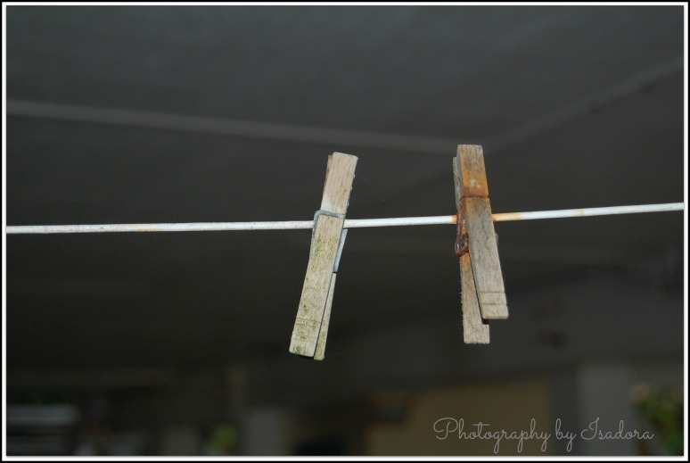 Clothes Pins  (2)web