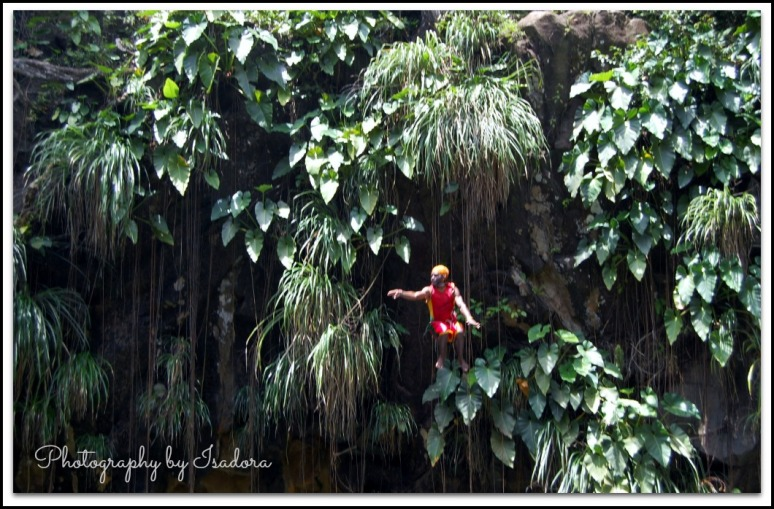 Grenada - Marivin Jumping-pointing web