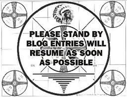 Blog vacation #5