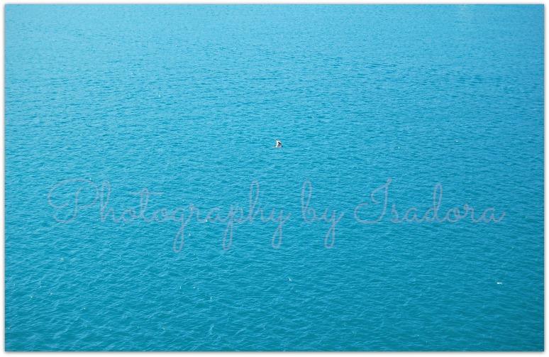 Sea - vastweb