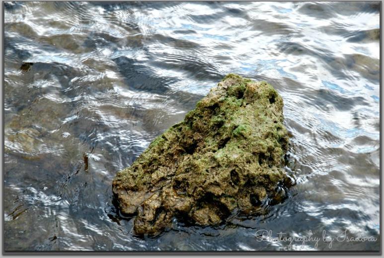 Mossy Rock II.web
