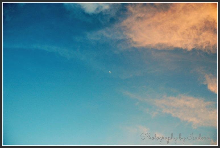 Sku - half moon.web