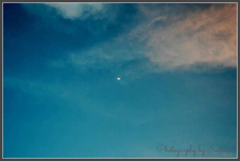 Sky - have moon 2.web