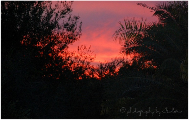 Mi Casa - Burning Red SKy.web