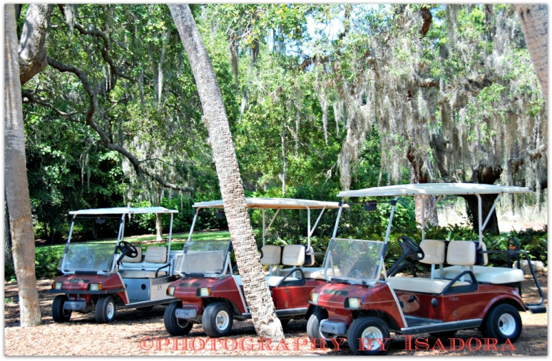 Golf Carts.web