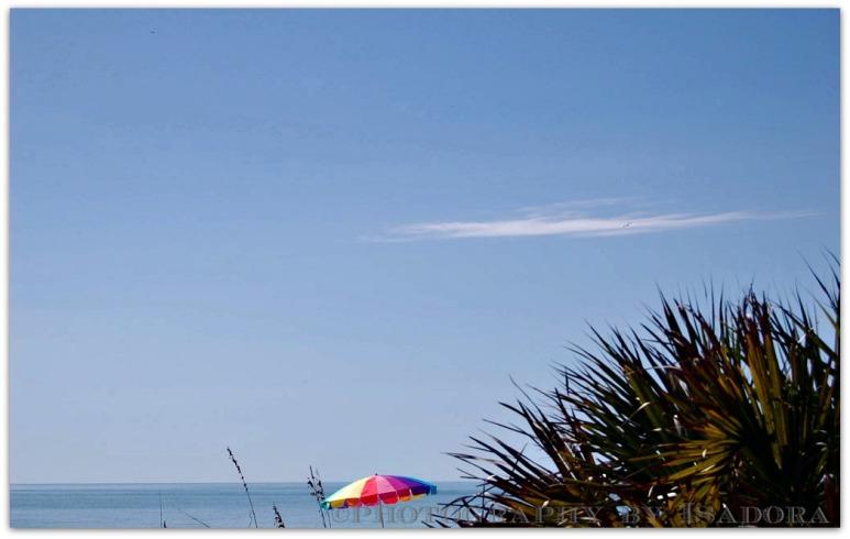 Manasota-Beach 2-sky.web