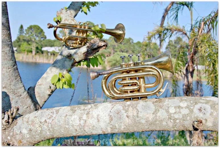 Trumpet-Cornet 2web (1024x687)