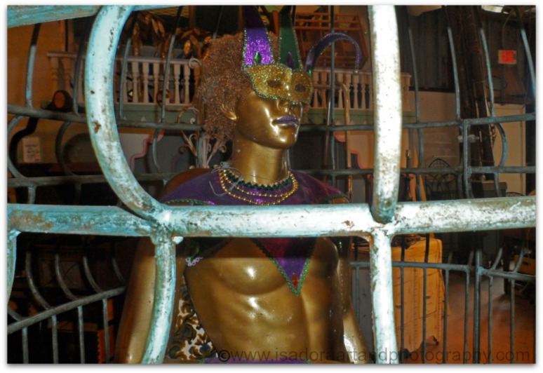 MardiGras-man-in-cage-3.web