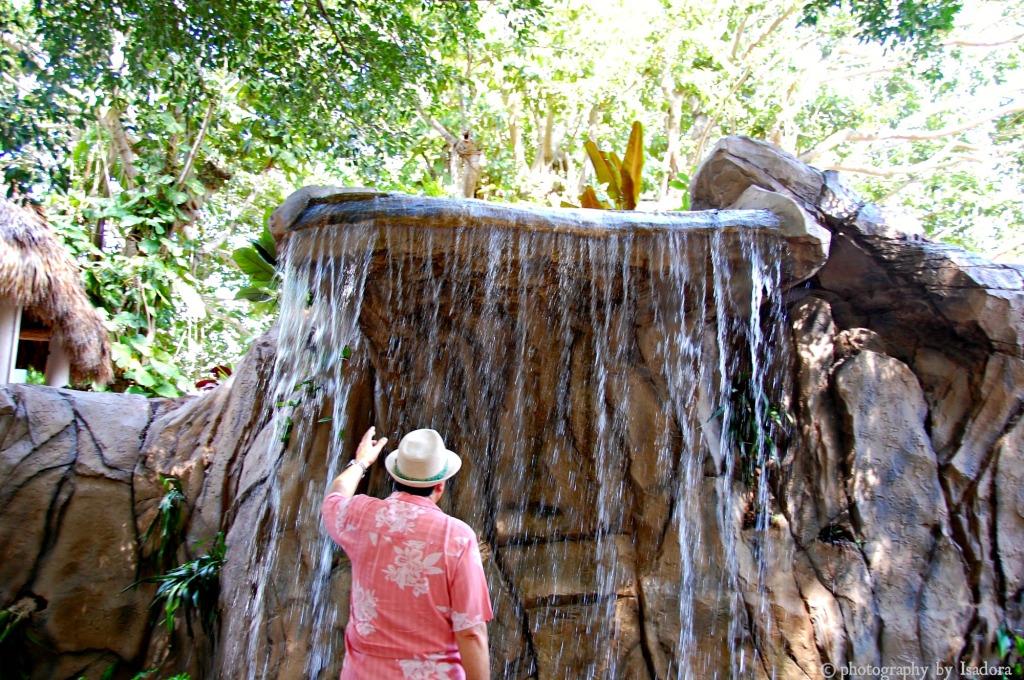 Al - Waterfall 1.web