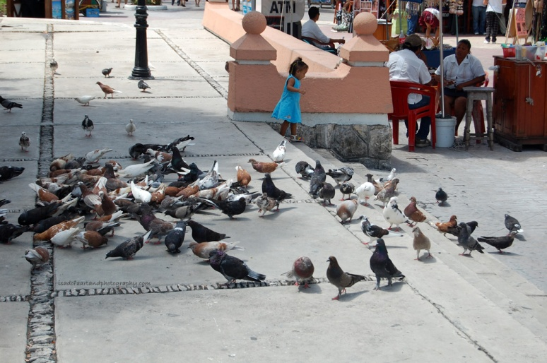 Mexico-girl-pigeons.web