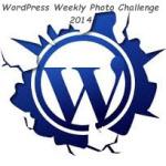 wordpress-20141[1]