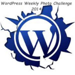 wordpress-20141[1]