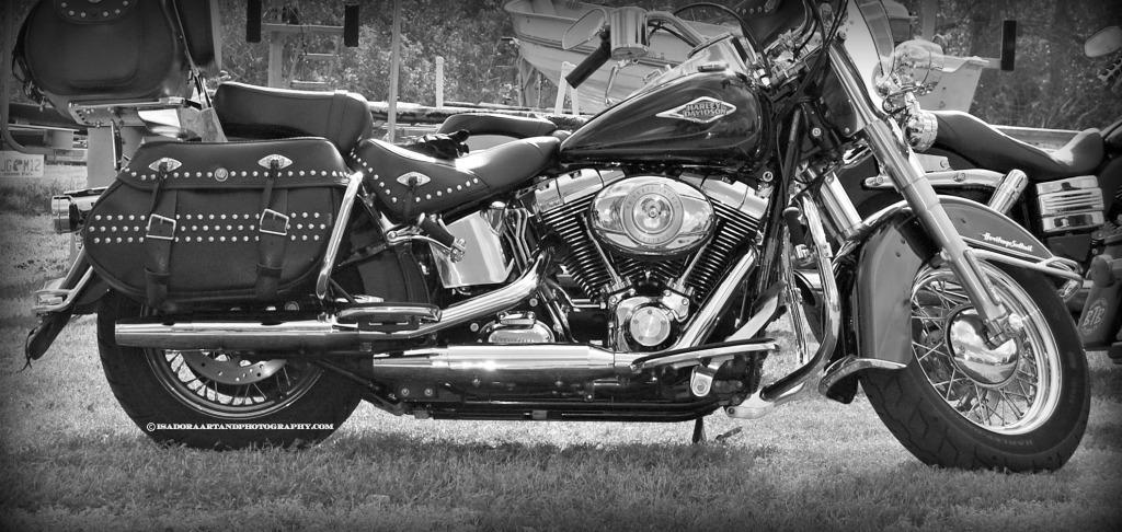 Motorcycle Harley A.web