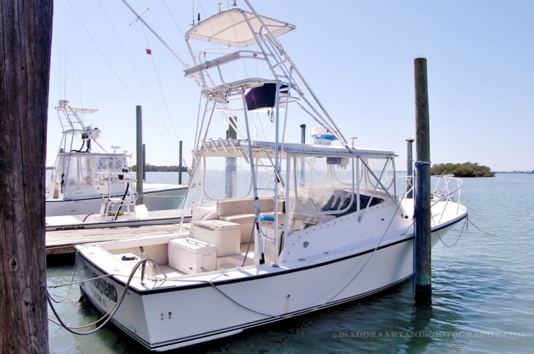 Boat Hammerhead Tour Boat.web