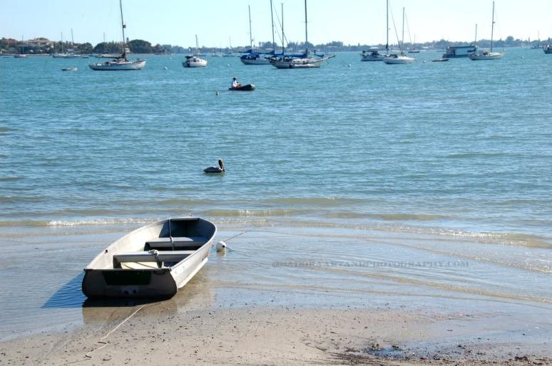 Boat Sailboat.web