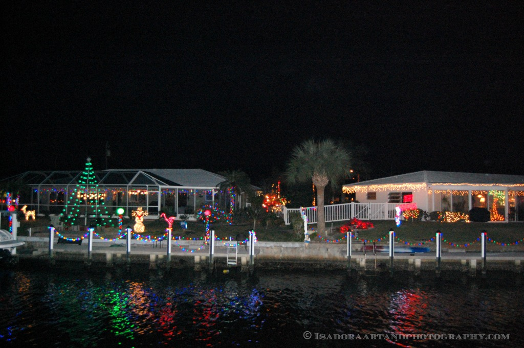 Christmas Lights.web