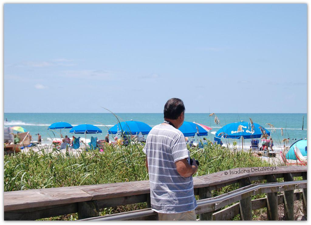 Beach Umbrellas - Al.web