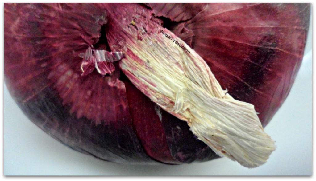 Vegetable Red Onion Macro.web