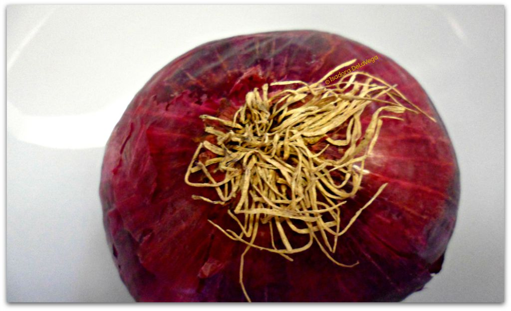 Vegetable Red Onion.web