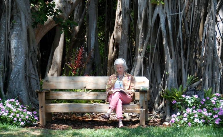 Bench - Woman Reading.web