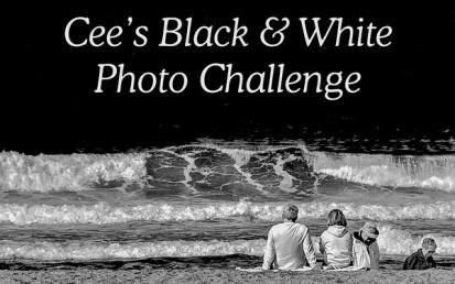 Cee's black-white-banner - Badge
