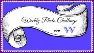 Badge photo 2016 WordPress.web