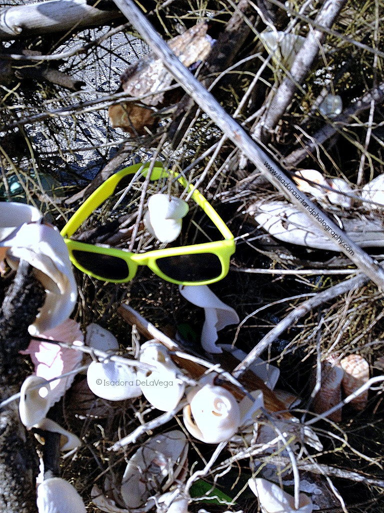 Beach Art - Sunglasses.web