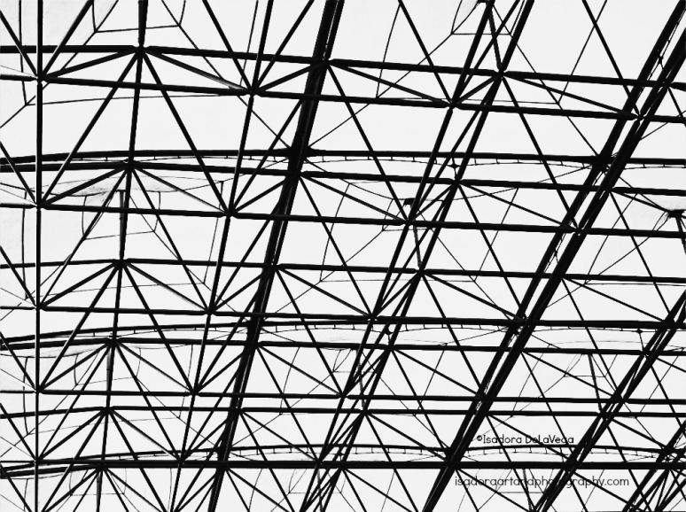 Black & White Ceiling1000-NFSF-hotel.web