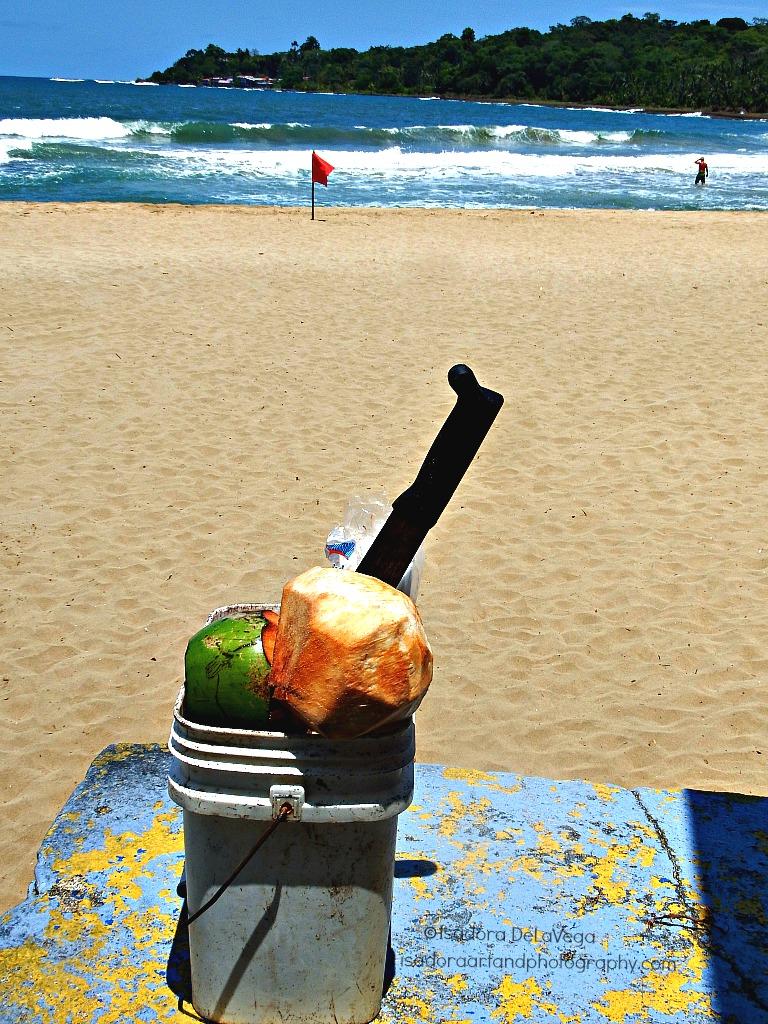 Odd Ball Beach Coconut.web
