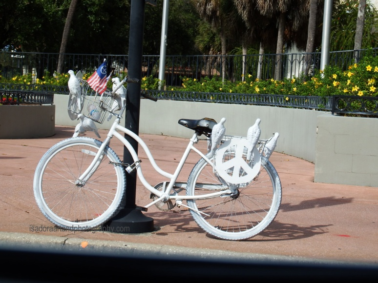 Sarasota-PS-DoveBicycle-1.web