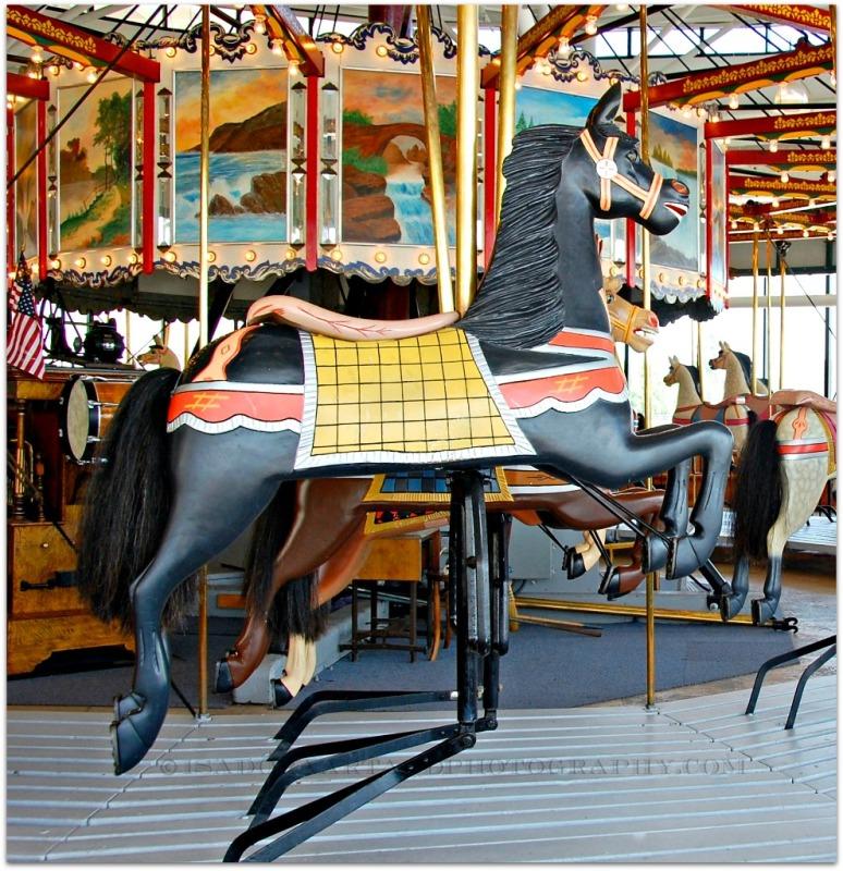 carousel-horse-1-web