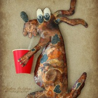 Wordless Wednesday - Party Dawg