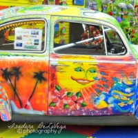 Wordless Wednesday - Woodstock or Bust
