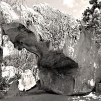 Aruba - Rock Formations