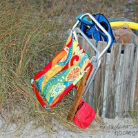 Wordless Wednesday - Beach Throw-Aways